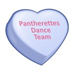 Pantherettes Dance Team