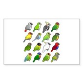 16 Birdorable Parrots Rectangle Sticker