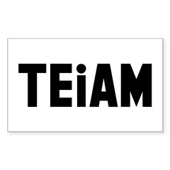 TEiAM Sticker (Rectangle)
