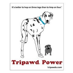 Tripawds posters and prints make great vet thank you gifts, help spread the word about your Tripawds community.