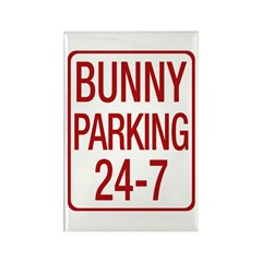 Bunny Parking Rectangle Magnet