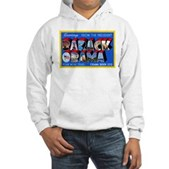 Greetings from the President Hooded Sweatshirt