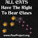 Right to Bear Claws T-Shirt