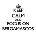 Keep calm and focus on Bergamascos T-Shirt