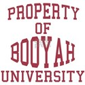 Property of Booyah University
