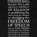 Freedom of Speech and of Religion T-Shirt