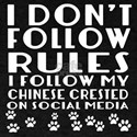 I Follow My Chinese Crested Dog T-Shirt