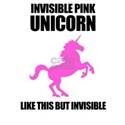 Invisible Pink Unicorn White T-Shirt