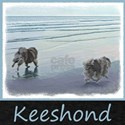 Keeshonds at the Seashore T-Shirt