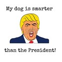 My Dog Is Smarter Than The President T-Shirt
